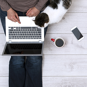 photo of woman and cat looking at a laptop